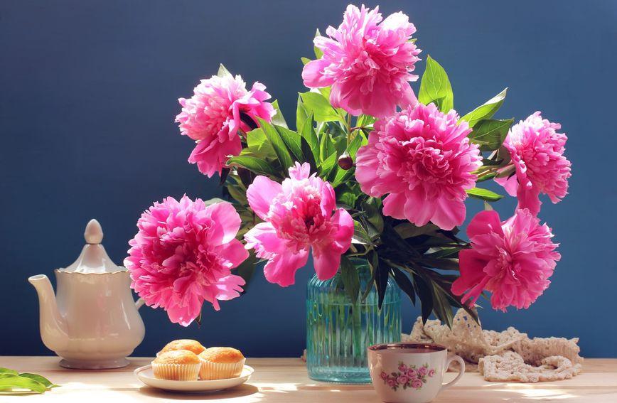 Cvijeće potiče bolje raspoloženje