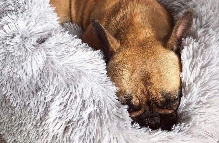 Krevetić za pse koji smiruje ljubimca izrađen je od visokokvalitetnog umjetnog krzna
