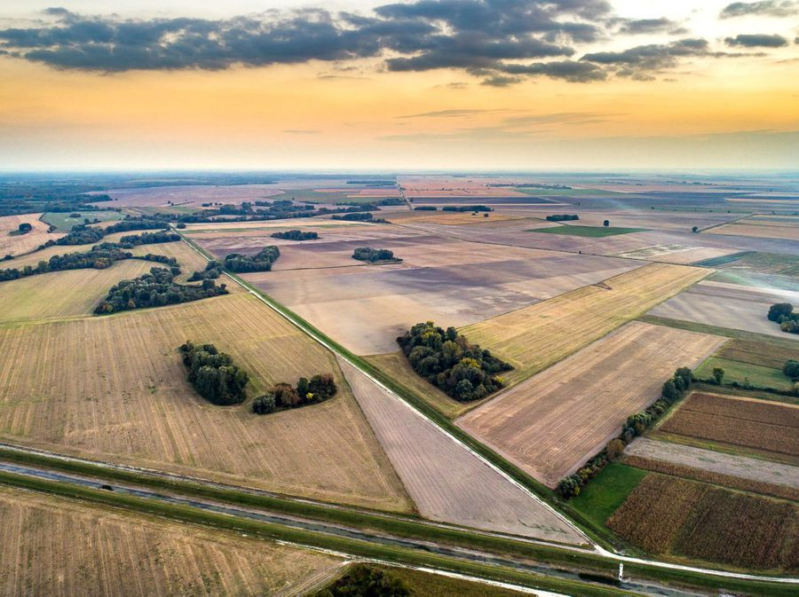 Slavonska polja