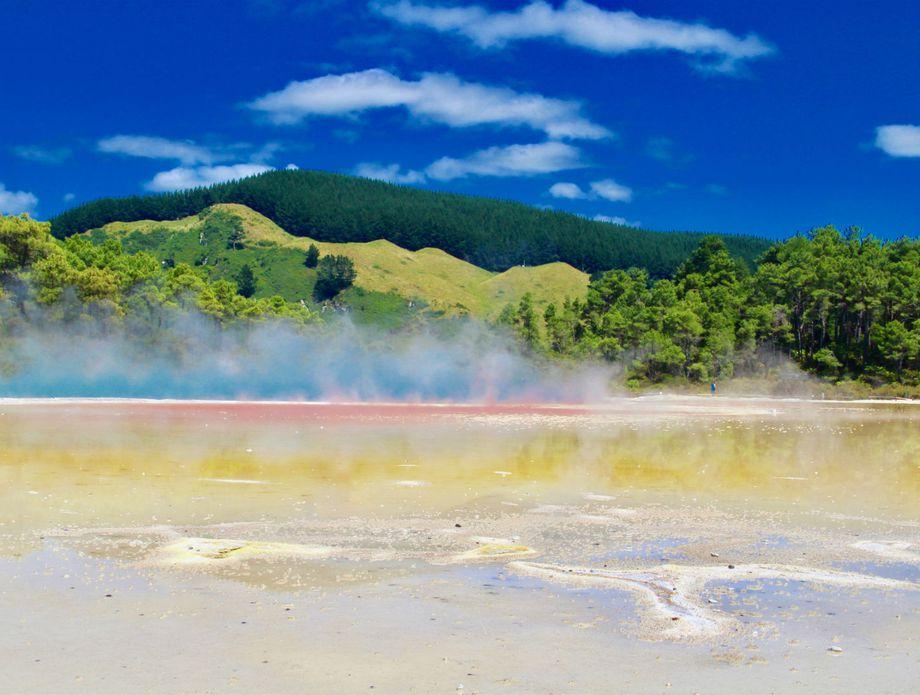 Antea na Novom Zelandu - 2