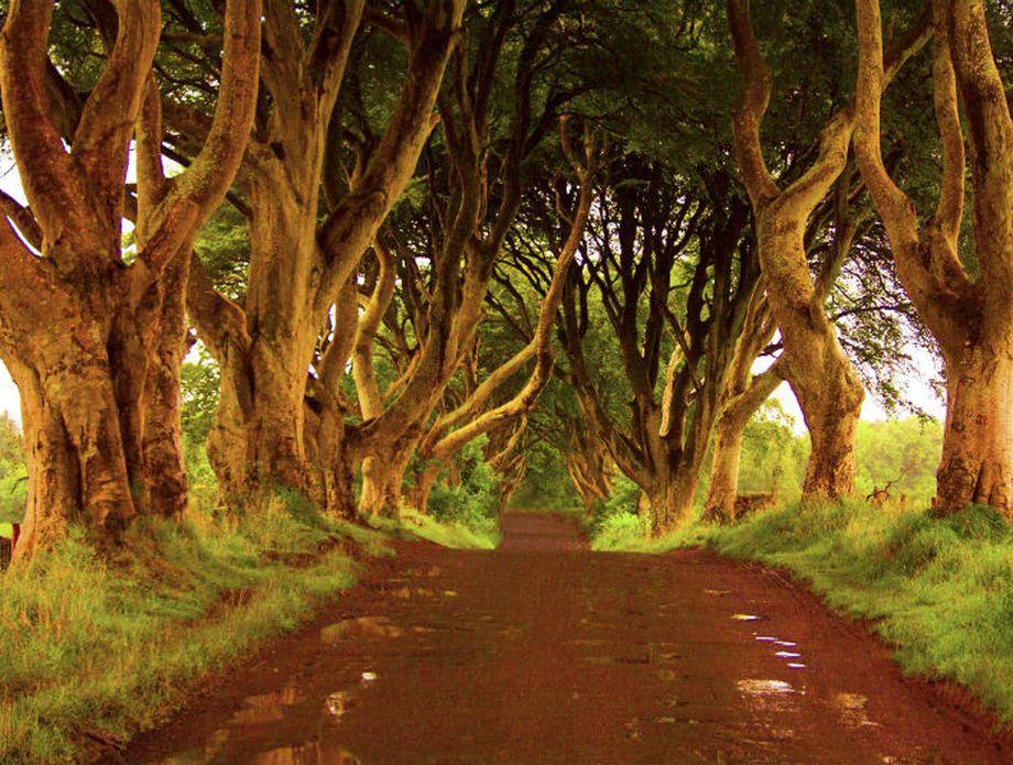 Sjeverna Irska