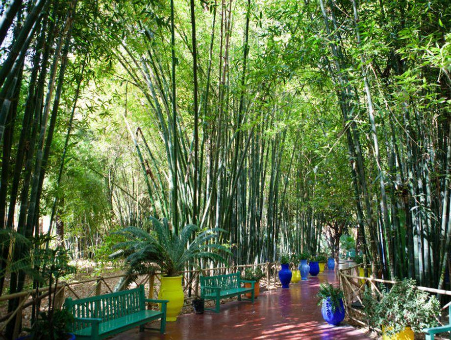 Majorelle vrtovi u Marakešu