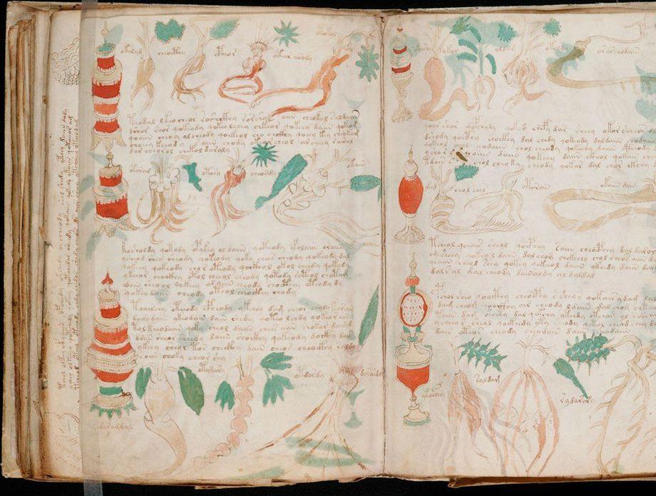 Voynichev rukopis