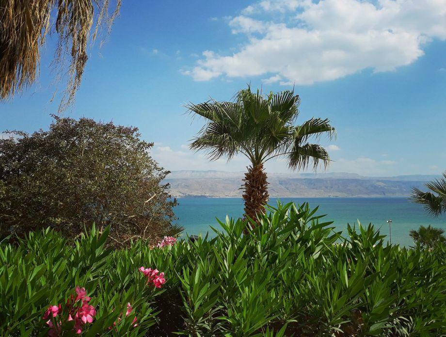 Zapadna Obala, Palestina - 6