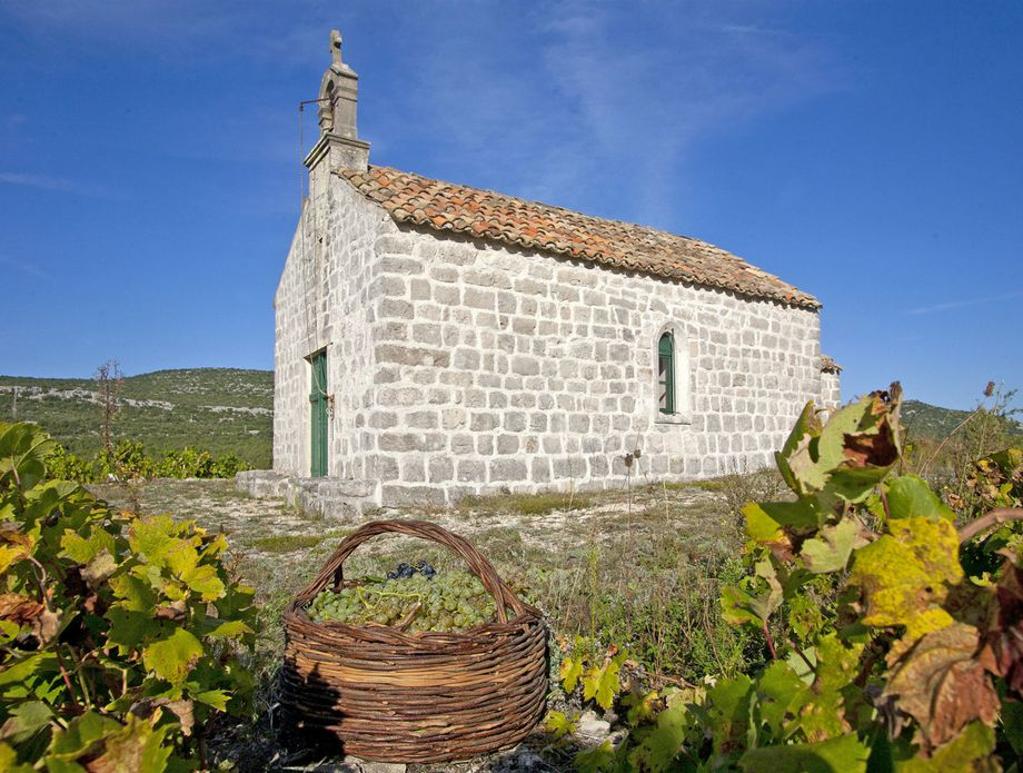 Prvi hrvatski muzej vinogradarstva i vinarstva - 1