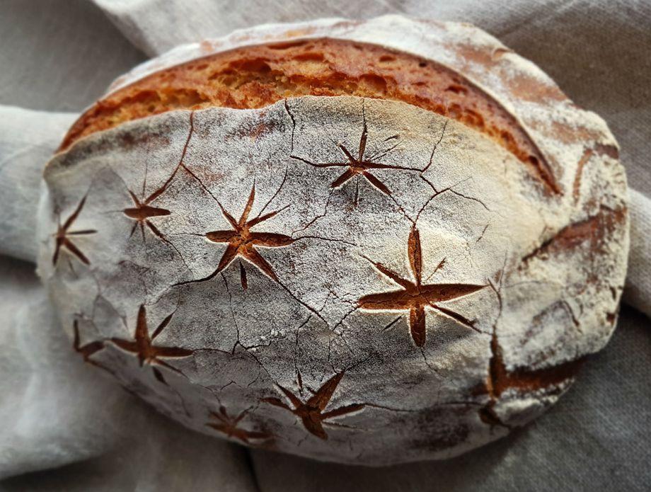 Kruh Anite Šumer - 2