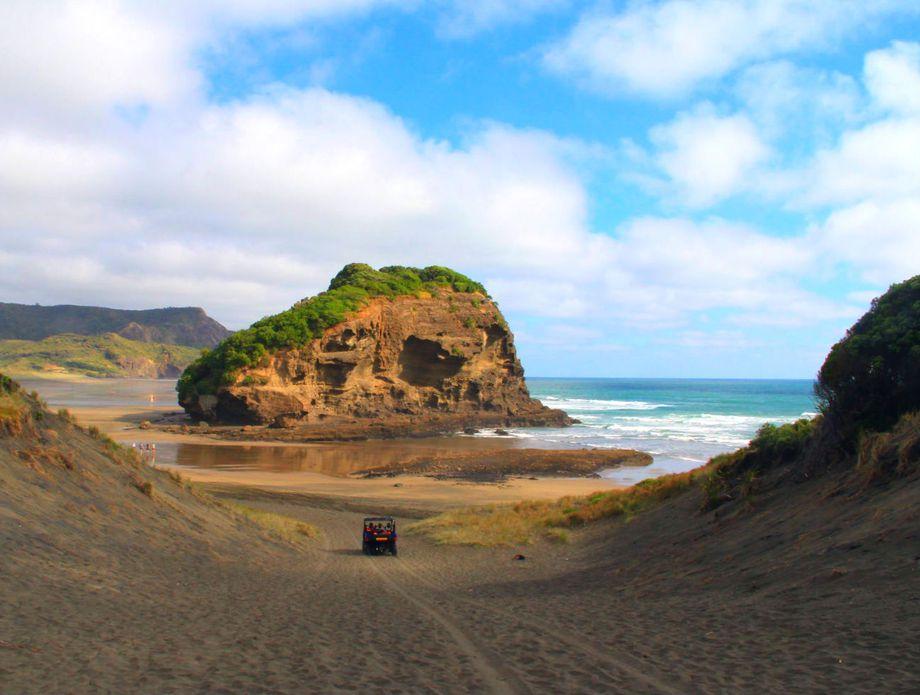 Antea na Novom Zelandu