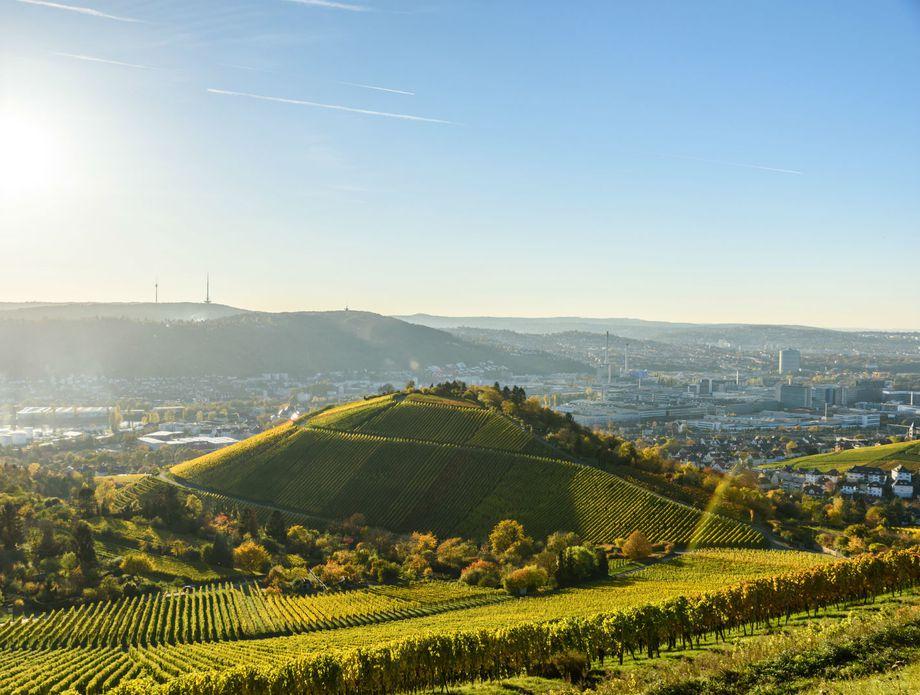 Stuttgart - 7