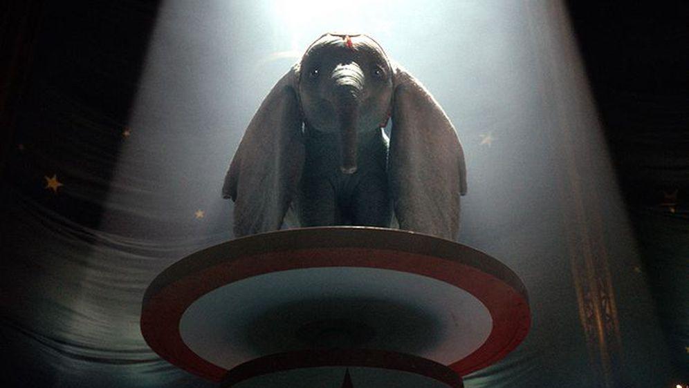 Dumbo (Foto: PR)