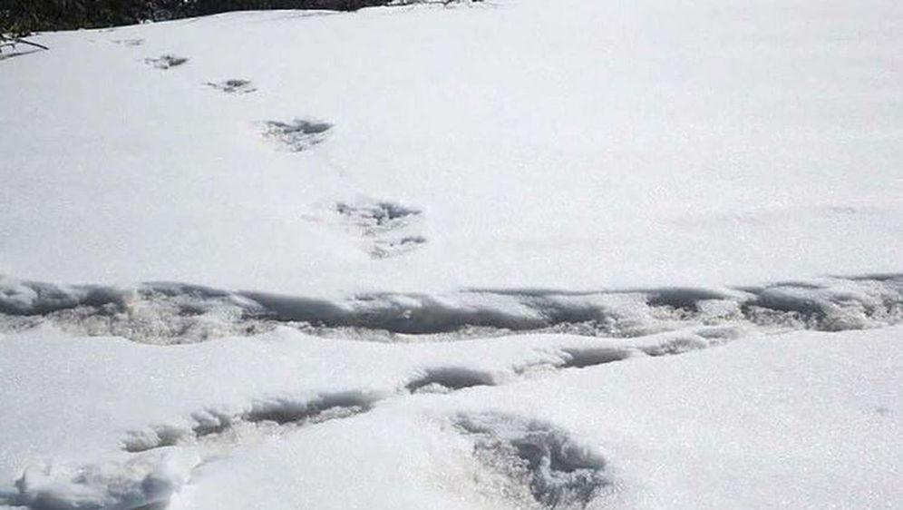 Stope u snijegu (Foto: Twitter/indijska vojska)