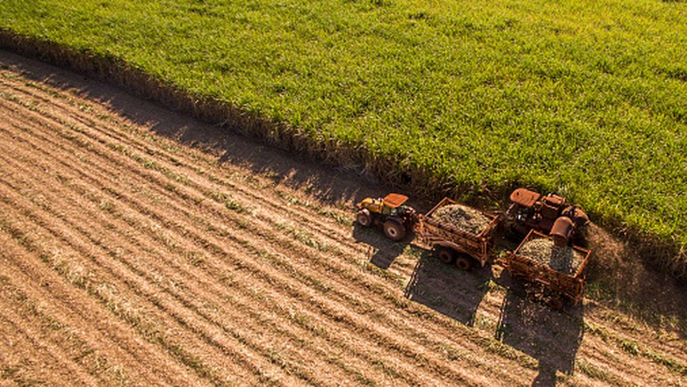 Branje usjeva (Foto: Getty Images)
