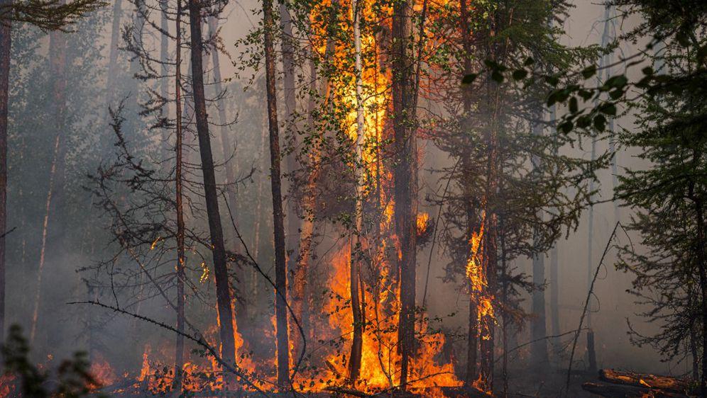 Požari u Sibiru