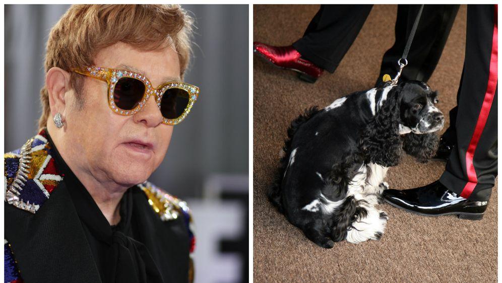 Elton John (FOTO: Getty)