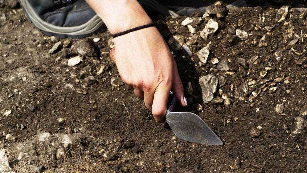 Arheologija (Foto: Guliver/Thinkstock)