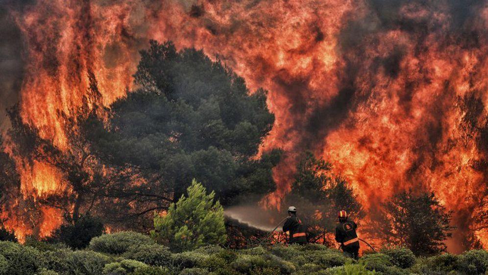 Posljedice katastrofalnog požara u Grčkoj (Foto: AFP) - 9