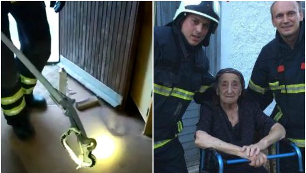 Spasili su baku od otrovnice (Foto: Slaven Nikolić, JVP Plitvička Jezera)