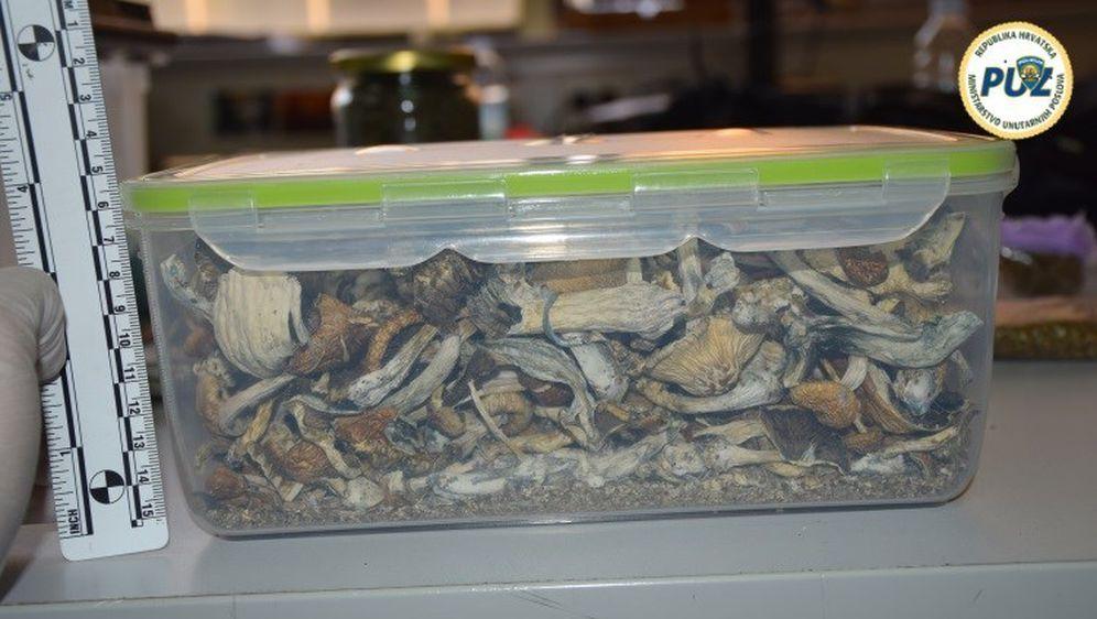 Policija u stanu pronaša drogu i zmije otrovnice (Foto: PUZ) - 3