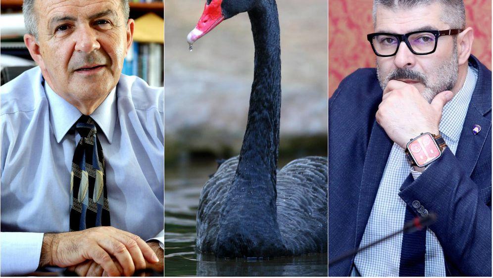 Što se krije iza teorije crnog labuda (Foto: Pixsell)