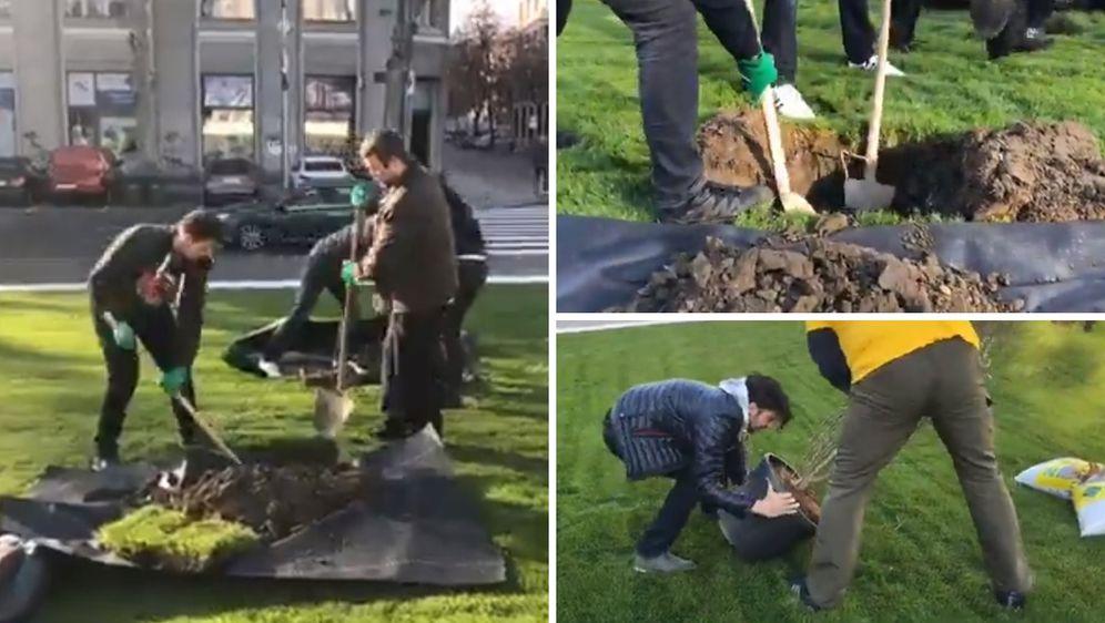 Članovi Živog zida na Trgu žrtava fašizma sade magnoliju (Foto: screenshot/Facebook/Živi zid)