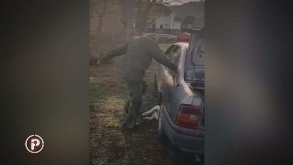 Zlostavljanje i mučenje životinja (Screenshot: Provjereno Nove TV) - 6