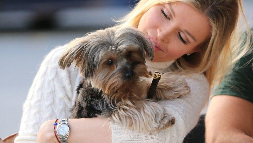 Joanna Krupa sa svojim udomljenim psićem