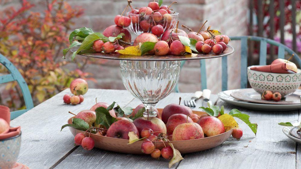 Jabuke mogu biti glavna zvijezda središnjeg aranžmana za blagovaonski stol